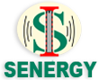 Senergy Intellution